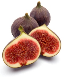 figs[1]