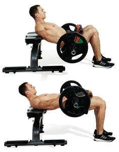 15-most-important-exercises-barbell-hip-thrust[1]