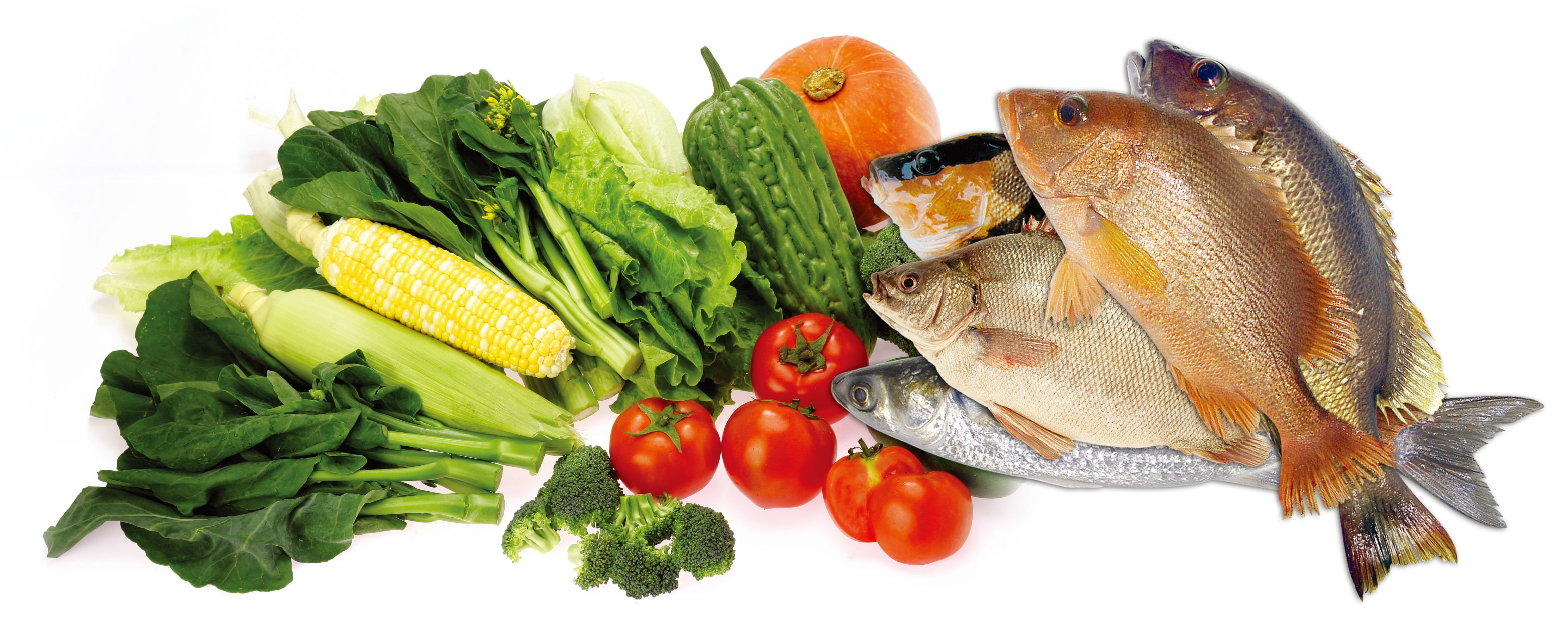 Eating veggies athletic performance training center for Fish with vegetables