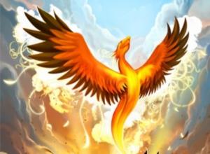 phoenix[1]